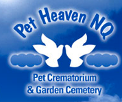 Pet Heaven NQ - Doctors Find